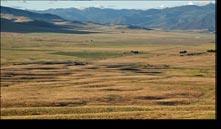 Camas Prairie Montana